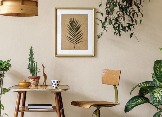 SPEKTRA CLASSIC PLUS, dekorativní interiérová barva